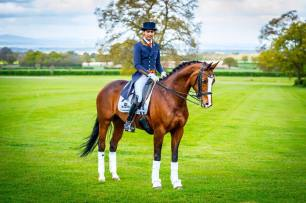 Bolesworth Preview